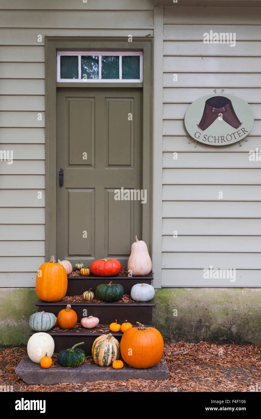 North Carolina, Winston-Salem, Old Salem, fall display - Stock Image