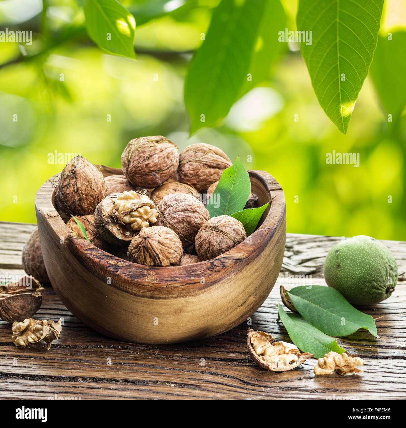 Walnuts in the wooden bowl on the table under the walnut tree. Stock Photo
