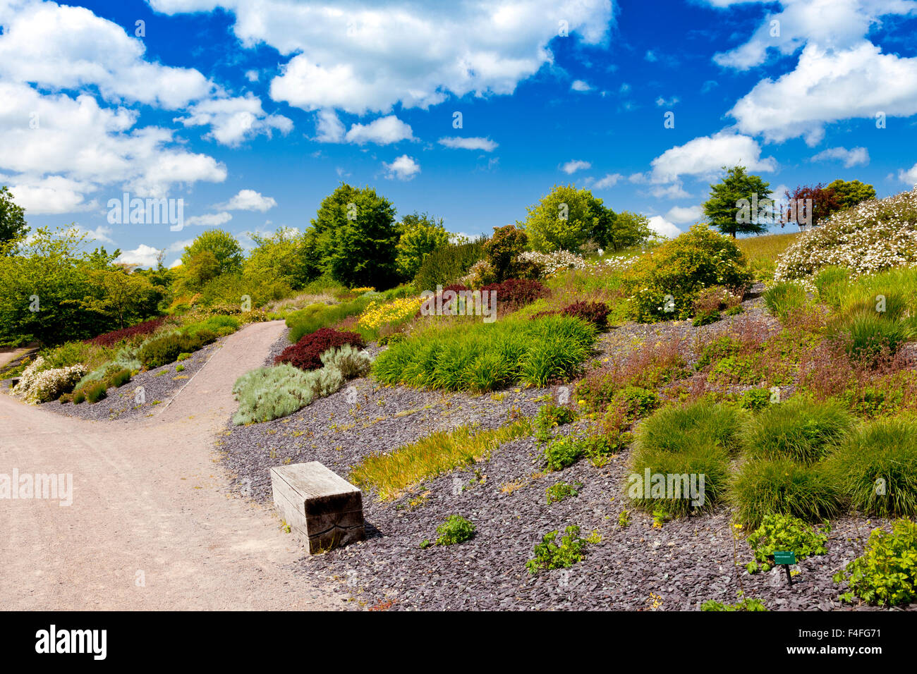 The slate beds at the National Botanical Gardens of Wales, Carmarthenshire, Wales, UK - Stock Image