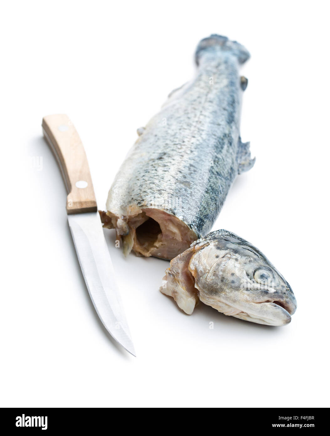 the gutted trout with knife on white background - Stock Image