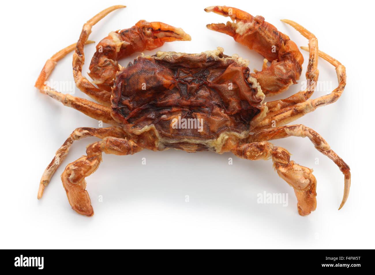 Soft Shell Crab City Island