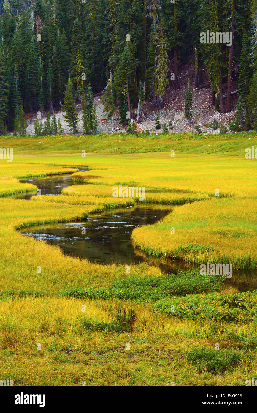 kings-creek-meadow-lassen-volcanic-natio