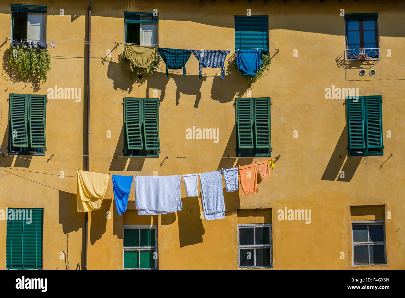 Piazza Anfiteatro, Lucca, Tuscany, Italy, Europe Stock Photo