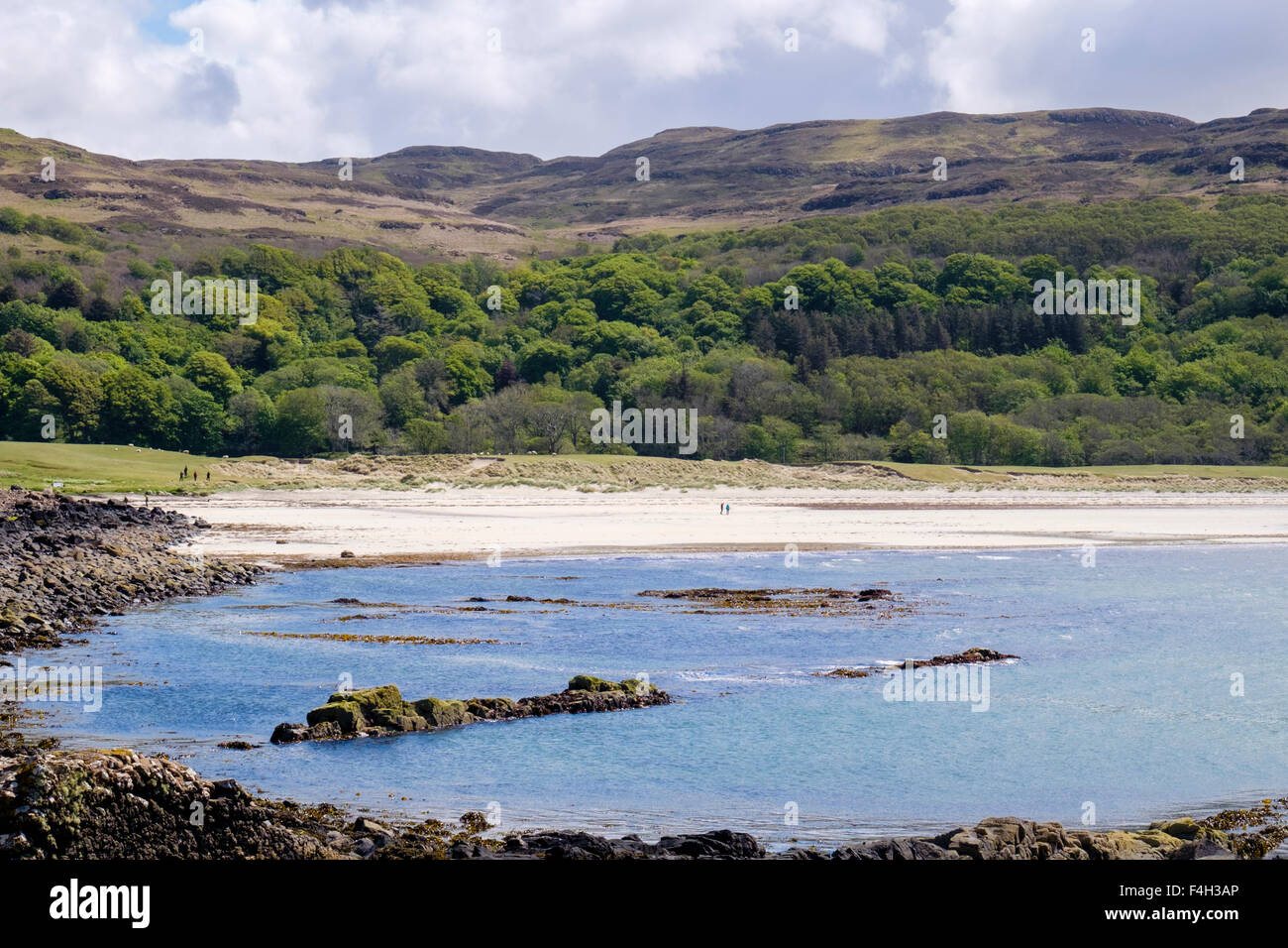 Mull's only sandy beach at Calgary Bay, Isle of Mull, Argyll and Bute, Inner Hebrides, Western Isles, Scotland, - Stock Image