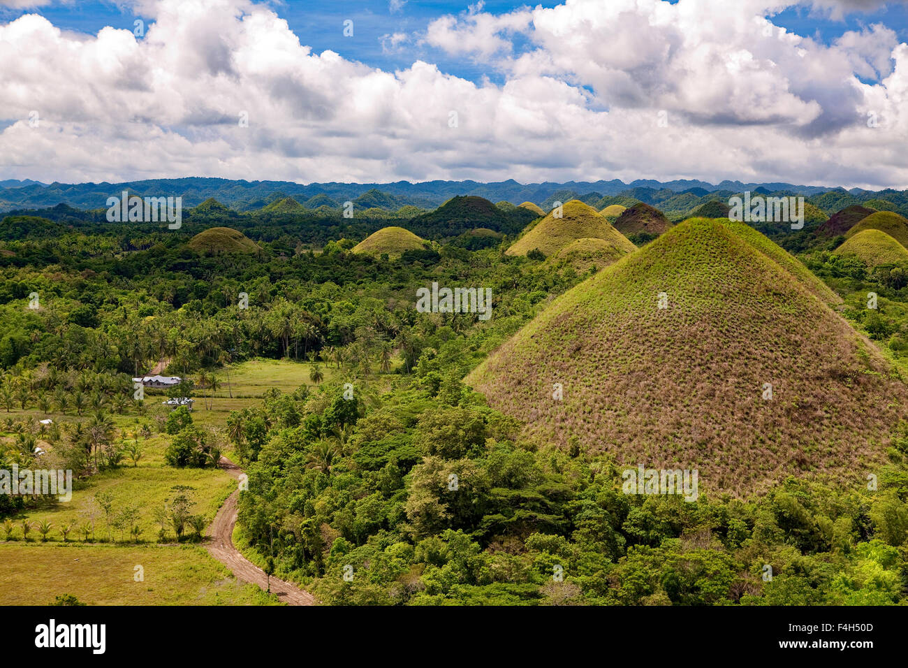 The Chocolate Hills of Bohol Island, Philippines numbering about 1,176 are grass-covered karst limestone geological - Stock Image