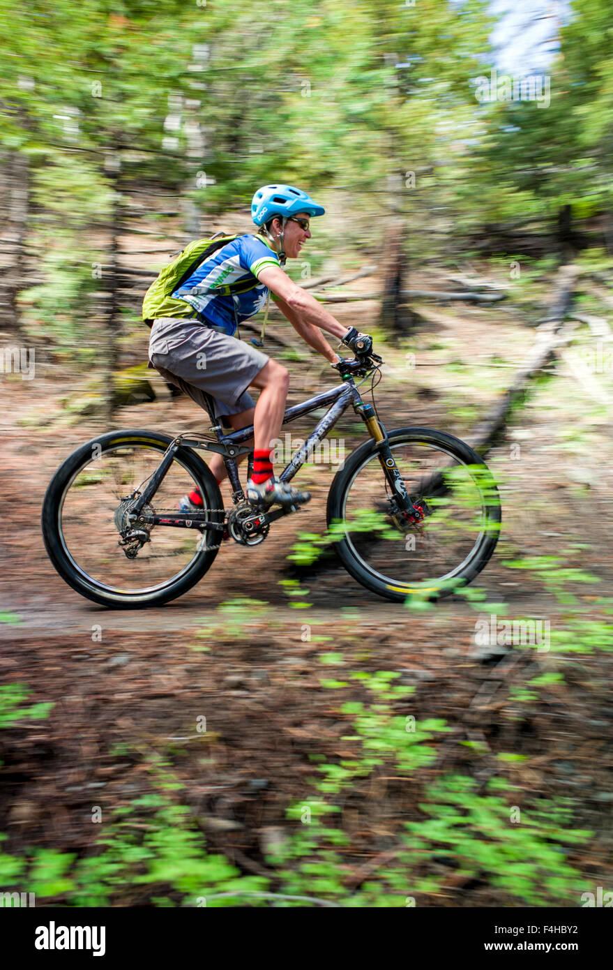Mountain bike rider on Little Rainbow Trail, near Bear Creek, Salida, Colorado, USA Stock Photo