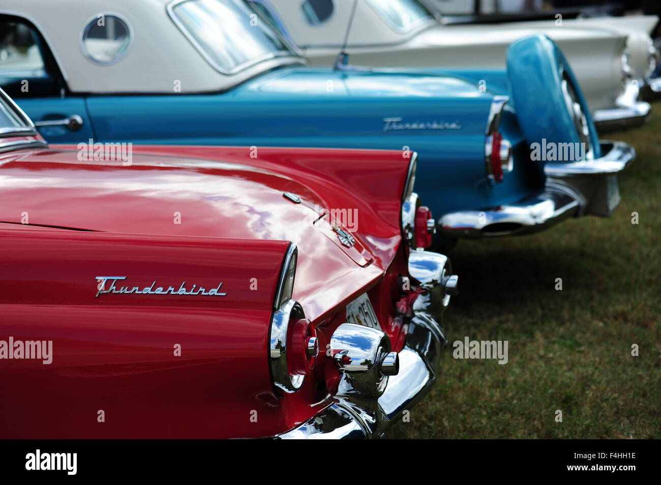 Classic American 1950s era Ford Thunderbirds cars car at an antique ...