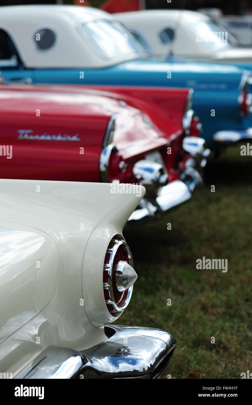 1950s Thunderbird Ford Car Automobile Stock Photos & 1950s ...