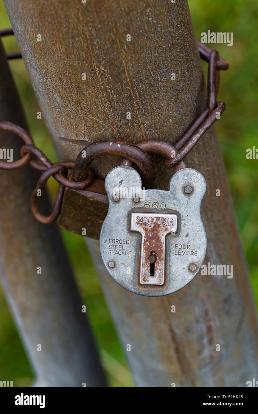 A padlock on a rural gatepost, UK - Stock Image