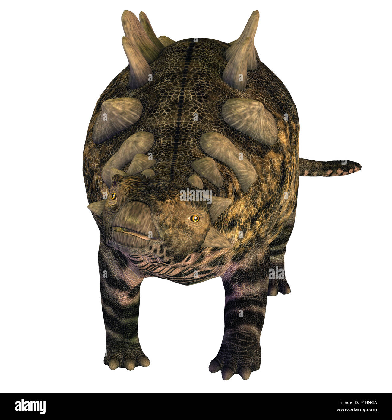 Crichtonsaurus was a heavily armored Ankylosaurus that lived in the Cretaceous Period of China. - Stock Image