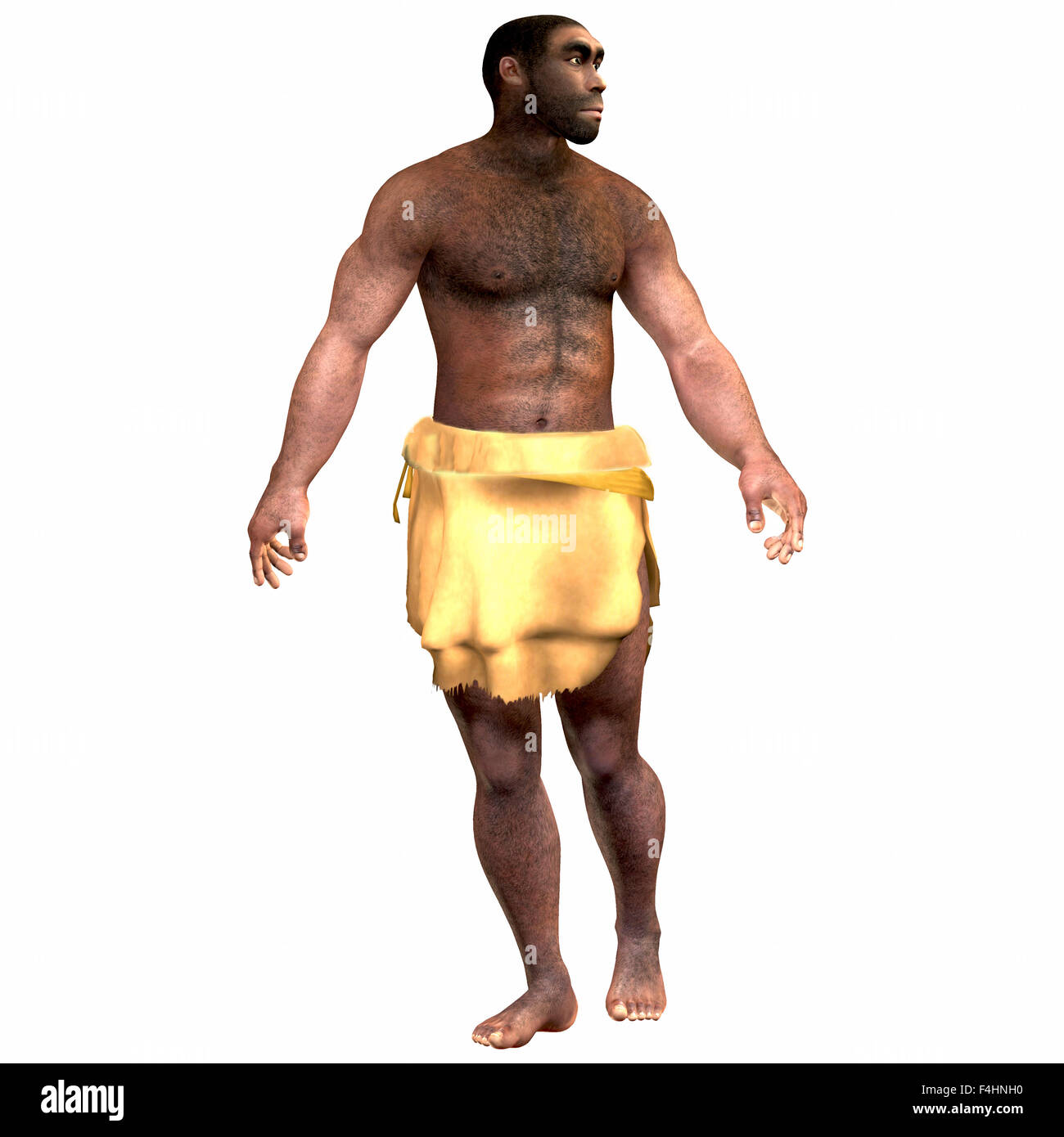 Homo Erectus is an extinct species of human that lived during the Pleistocene Period in Eurasia and Africa. - Stock Image