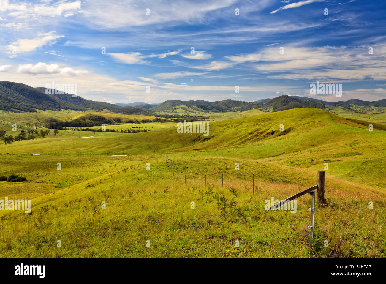 green cultivated pasture in a secluded valley at Barrington tops surrounded by distant mountain heads on a summer - Stock Image