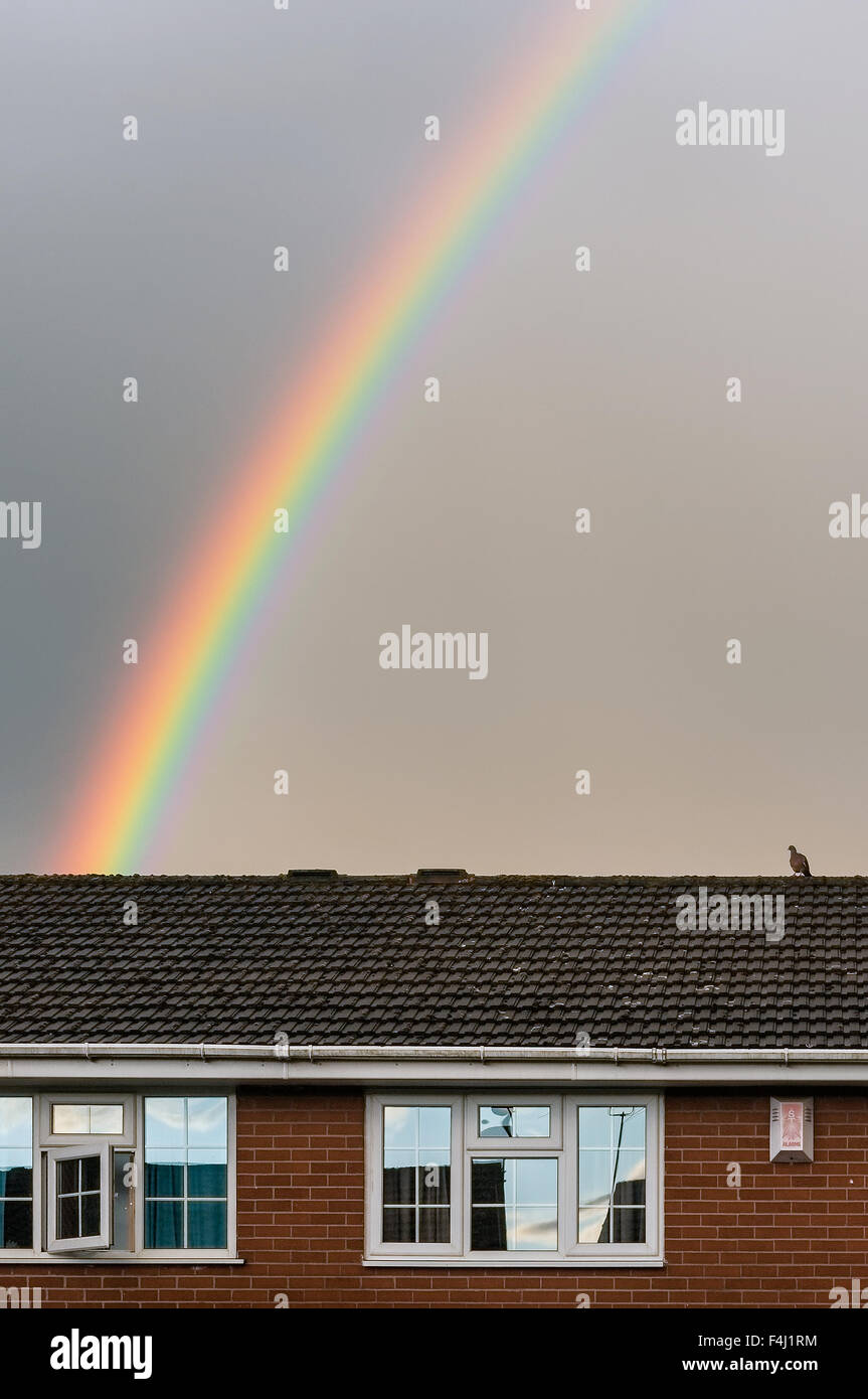 Rainbow in grey cloudy sky, with bird sitting on house roof in foreground. - Stock Image