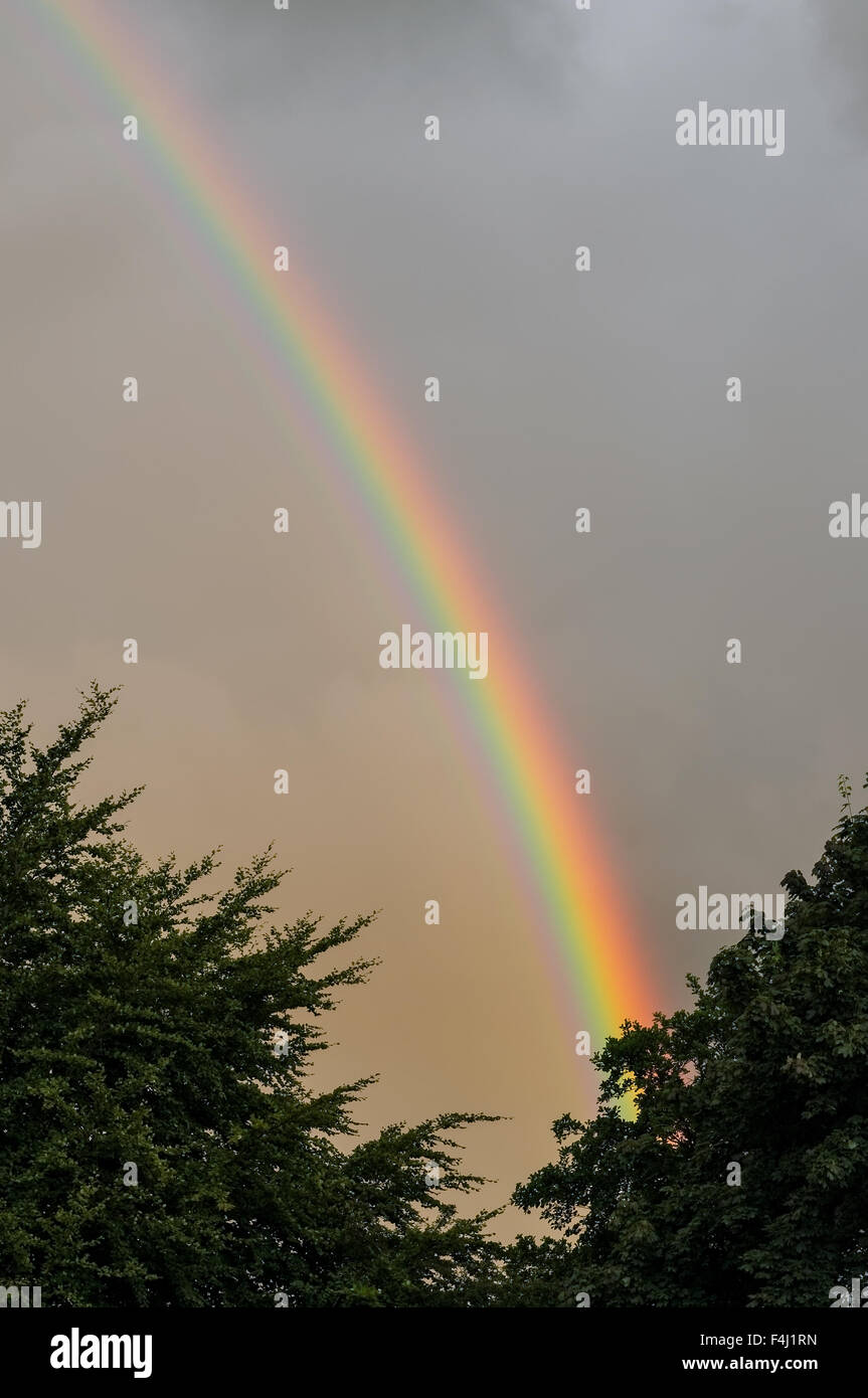 Rainbow in grey cloudy sky, with green trees in foreground. - Stock Image