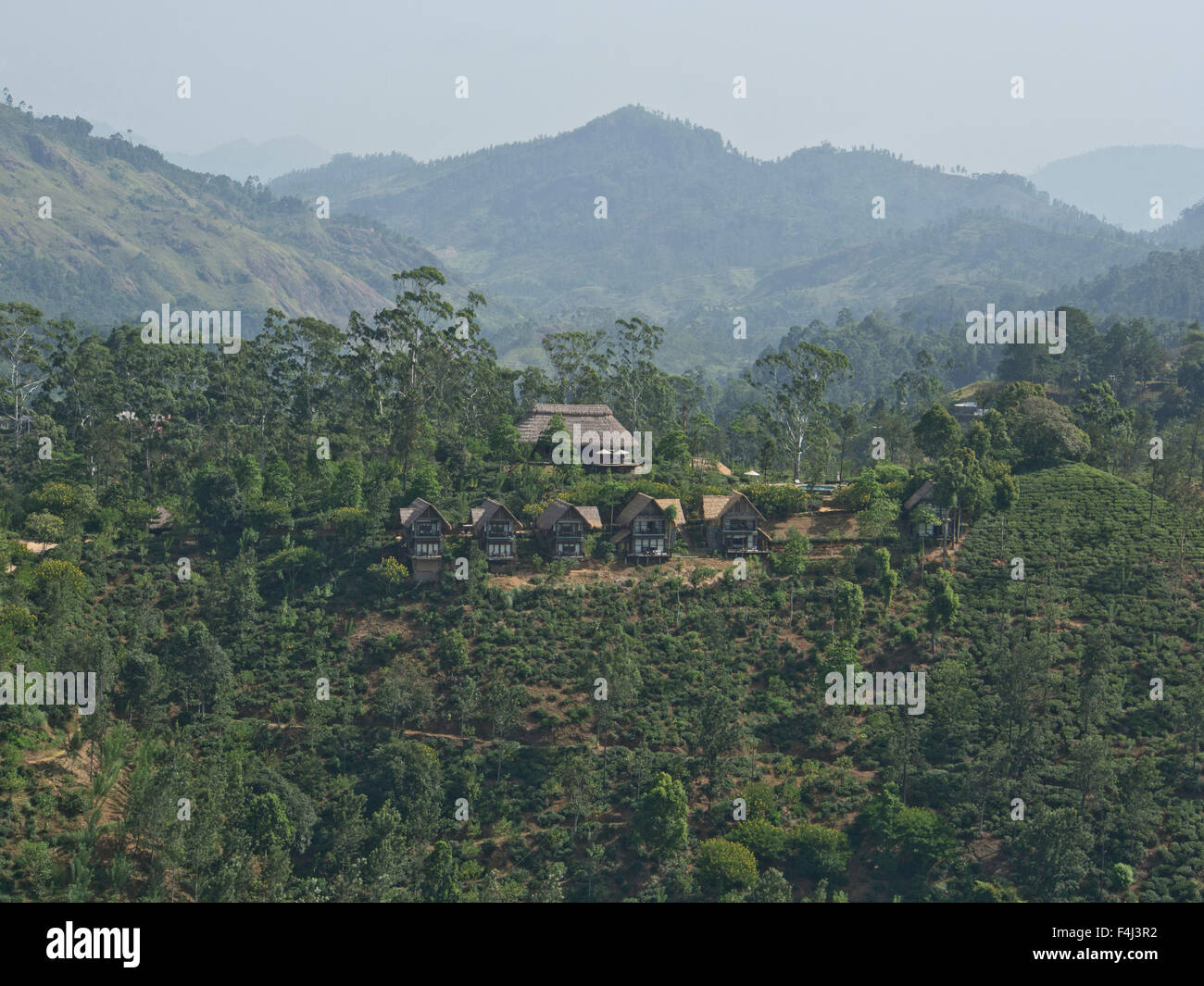 Mountain scenery and tea plantations around Ella, in the highlands of Sri Lanka, Asia - Stock Image