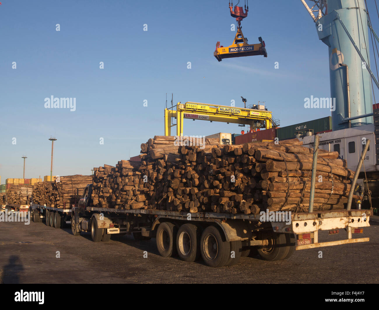Timber loaded for export at the harbour in Montevideo, Uruguay, South America Stock Photo