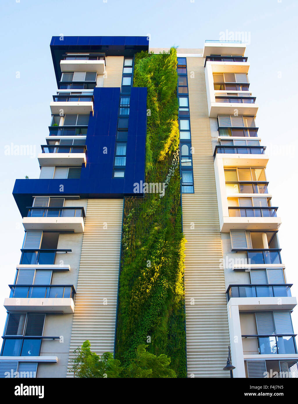 Patrick Blanc, a French botanist, has created his tallest vertical garden at a residential development in Sydney. - Stock Image