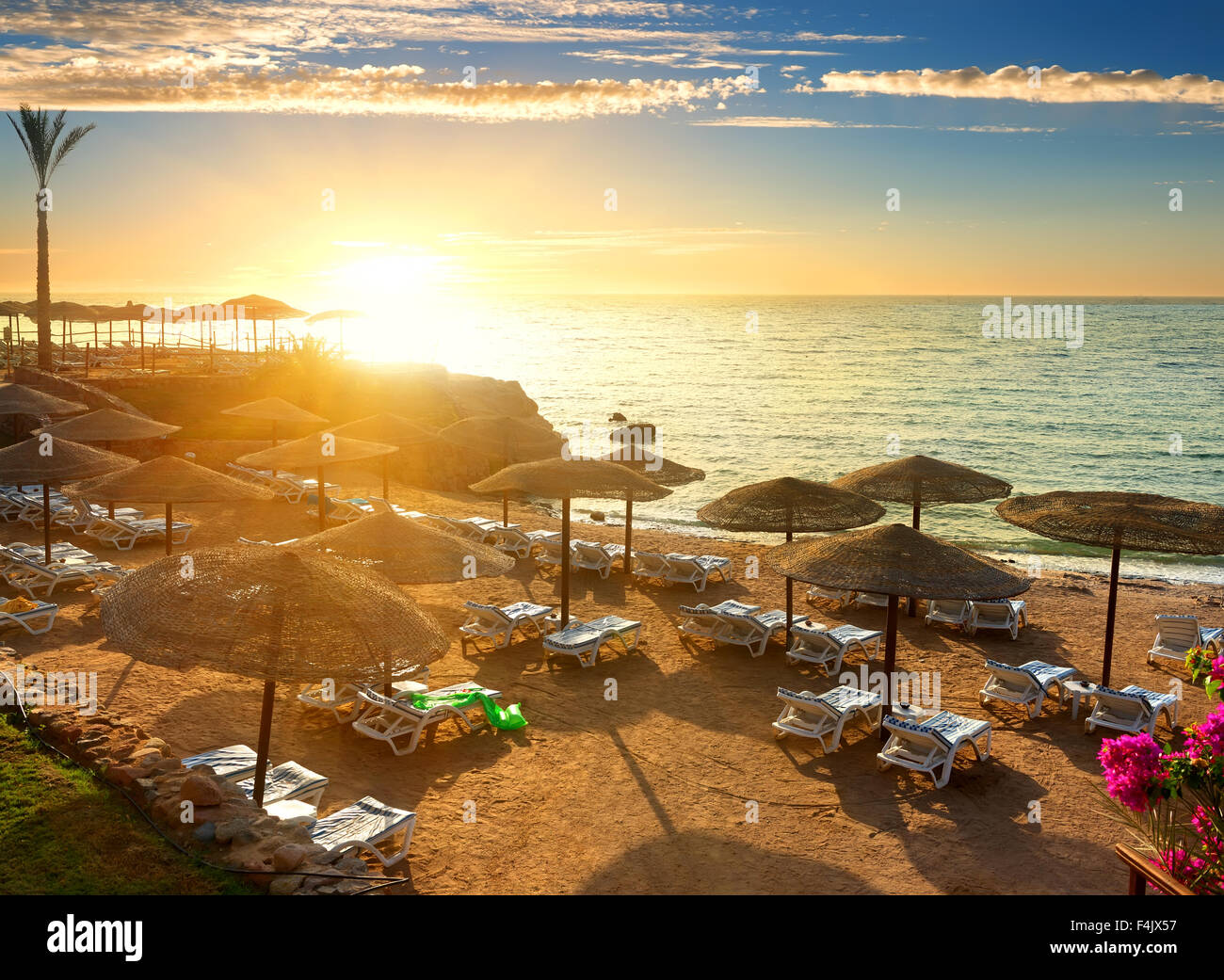 Red sea beach with parasols at sunset - Stock Image