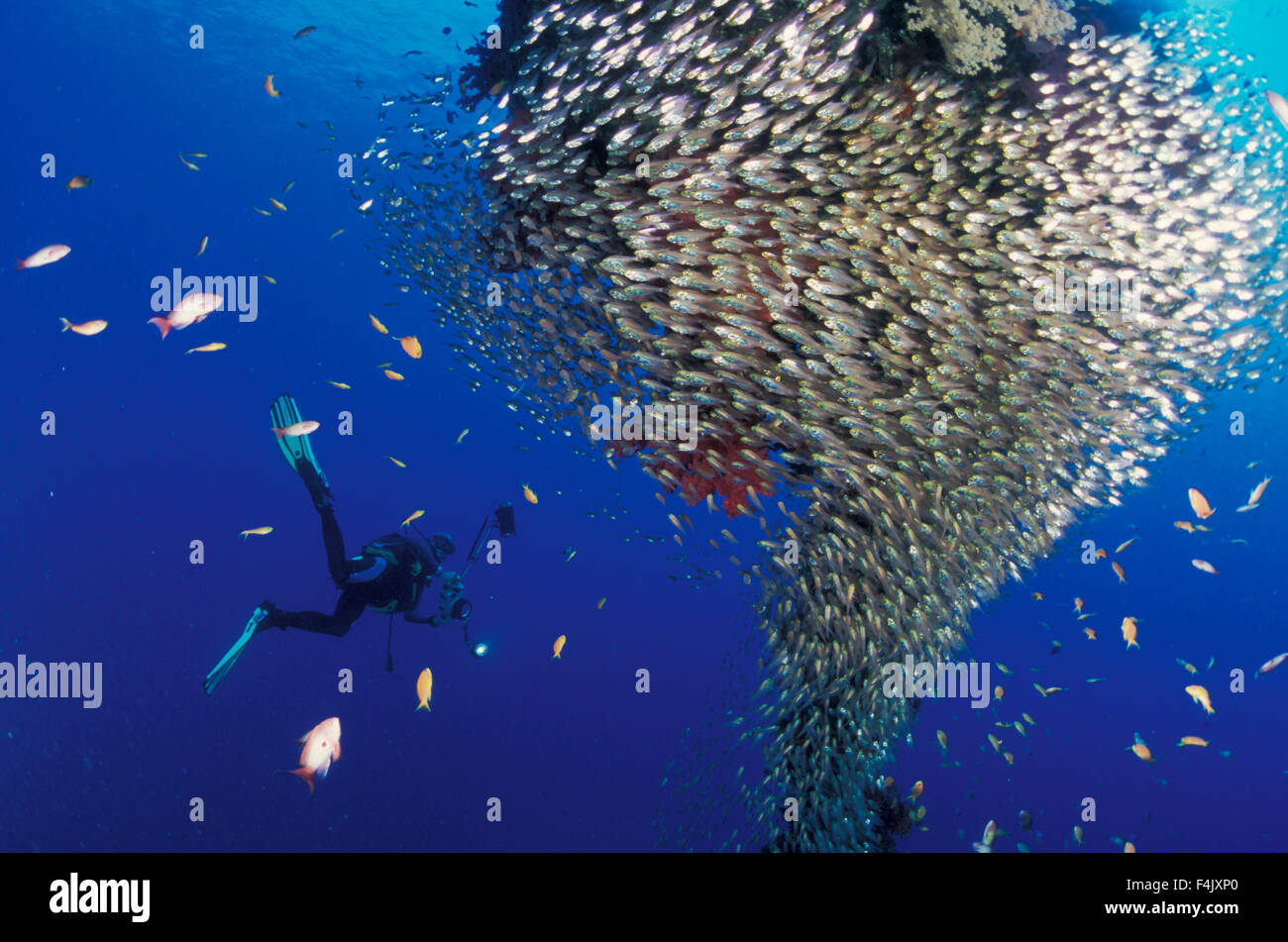 Sweepers and diver - Stock Image