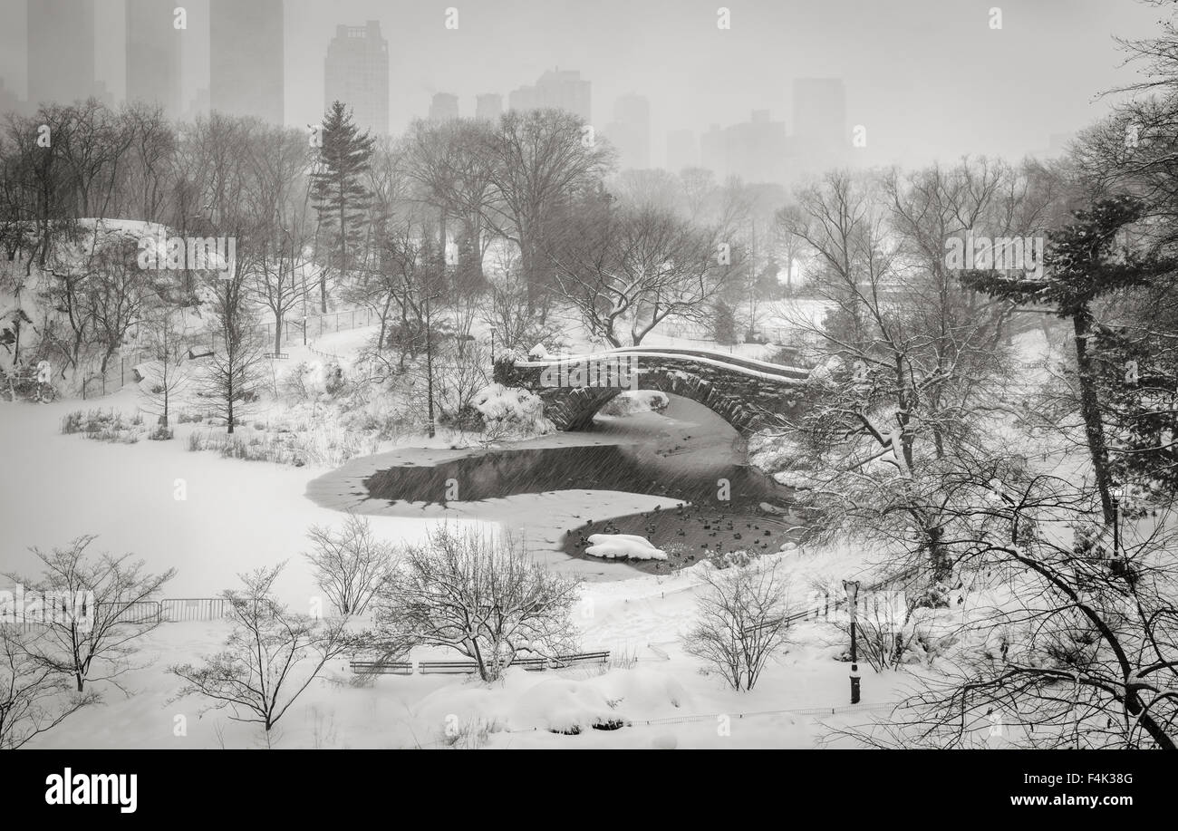 Central Park's Pond and Gapstow Bridge during a snowstorm. Quiet winter scene in the heart of Manhattan, New - Stock Image
