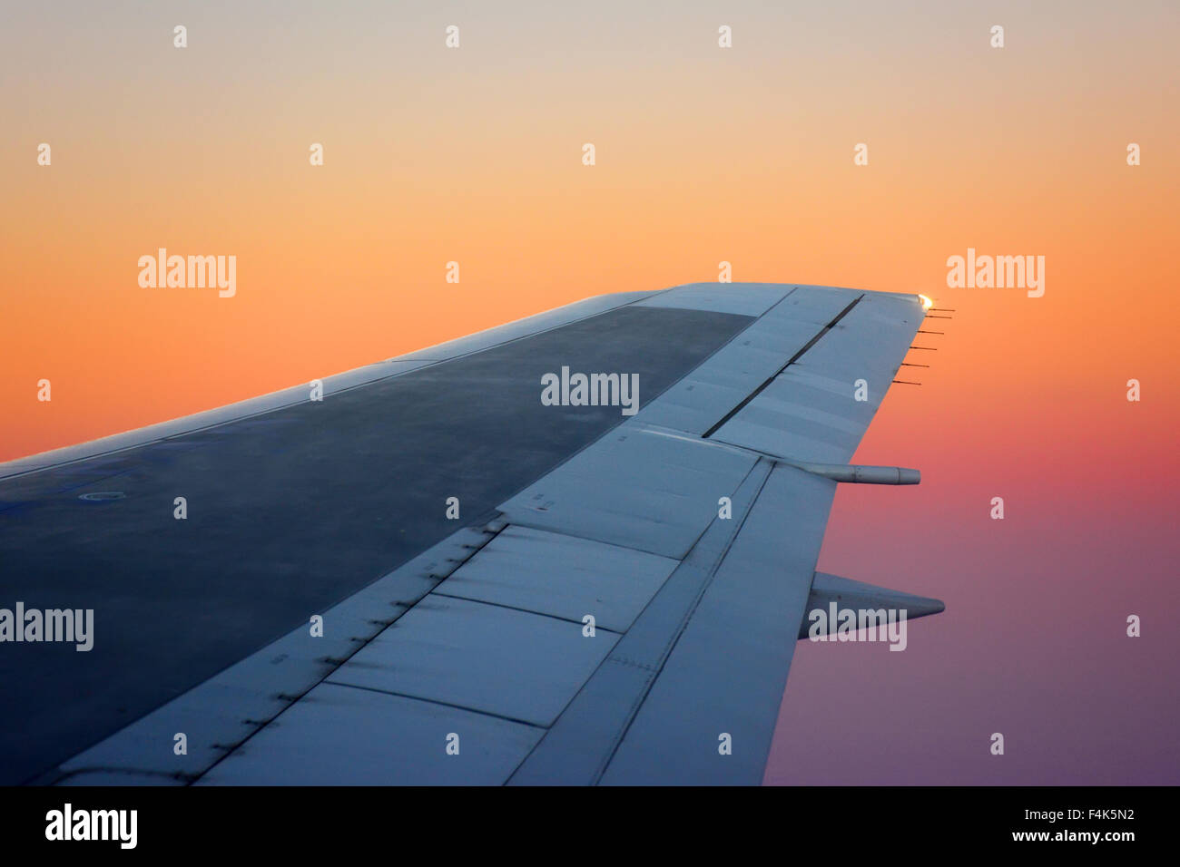 Airplane wing  on sunset - Stock Image