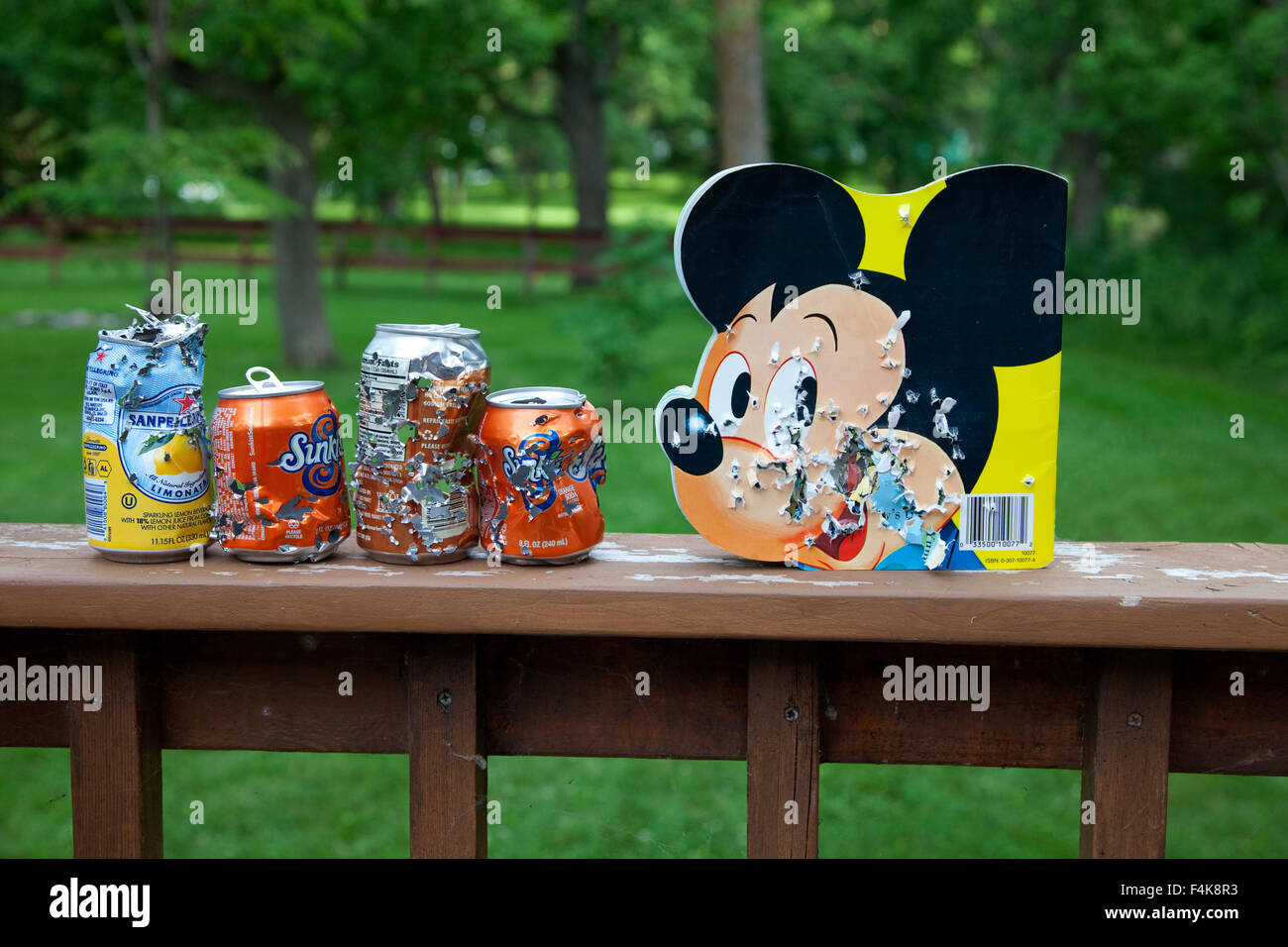 Lineup of bullet ridden soda cans and Mickey Mouse book used for shotgun target practice. Clitherall Minnesota MN - Stock Image