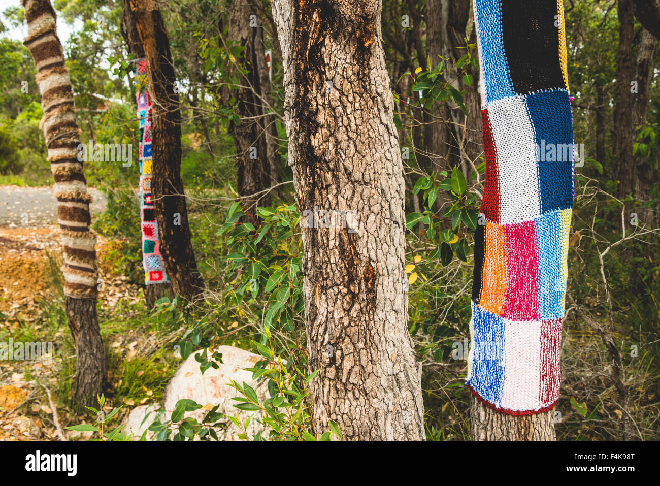 Trees wrapped with knit blankets Stock Photo