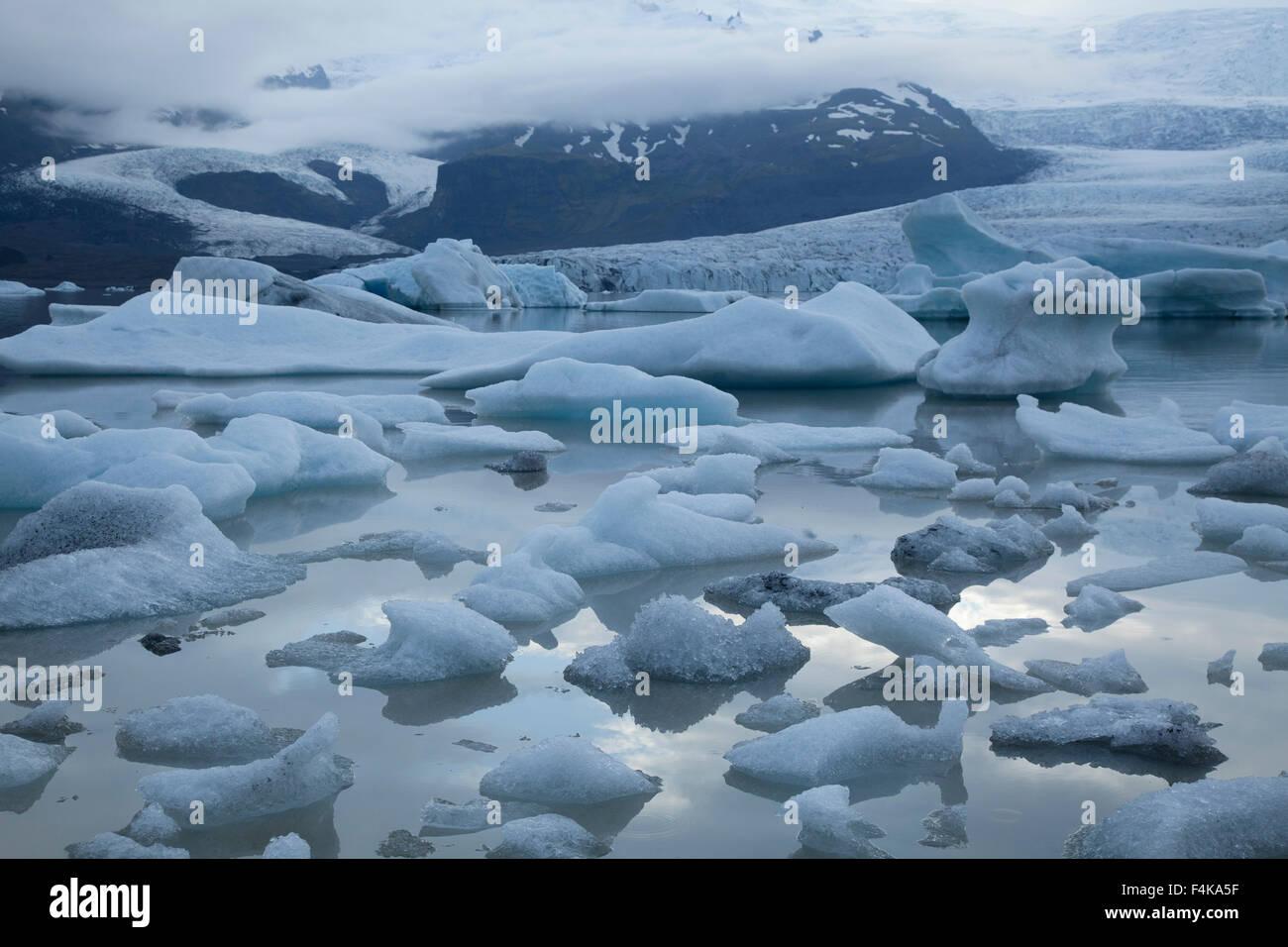 Icebergs in Fjallsarlon lagoon, beneath Fjallsjokull glacier, Vatnajokull National Park, Sudhurland, Iceland. - Stock Image