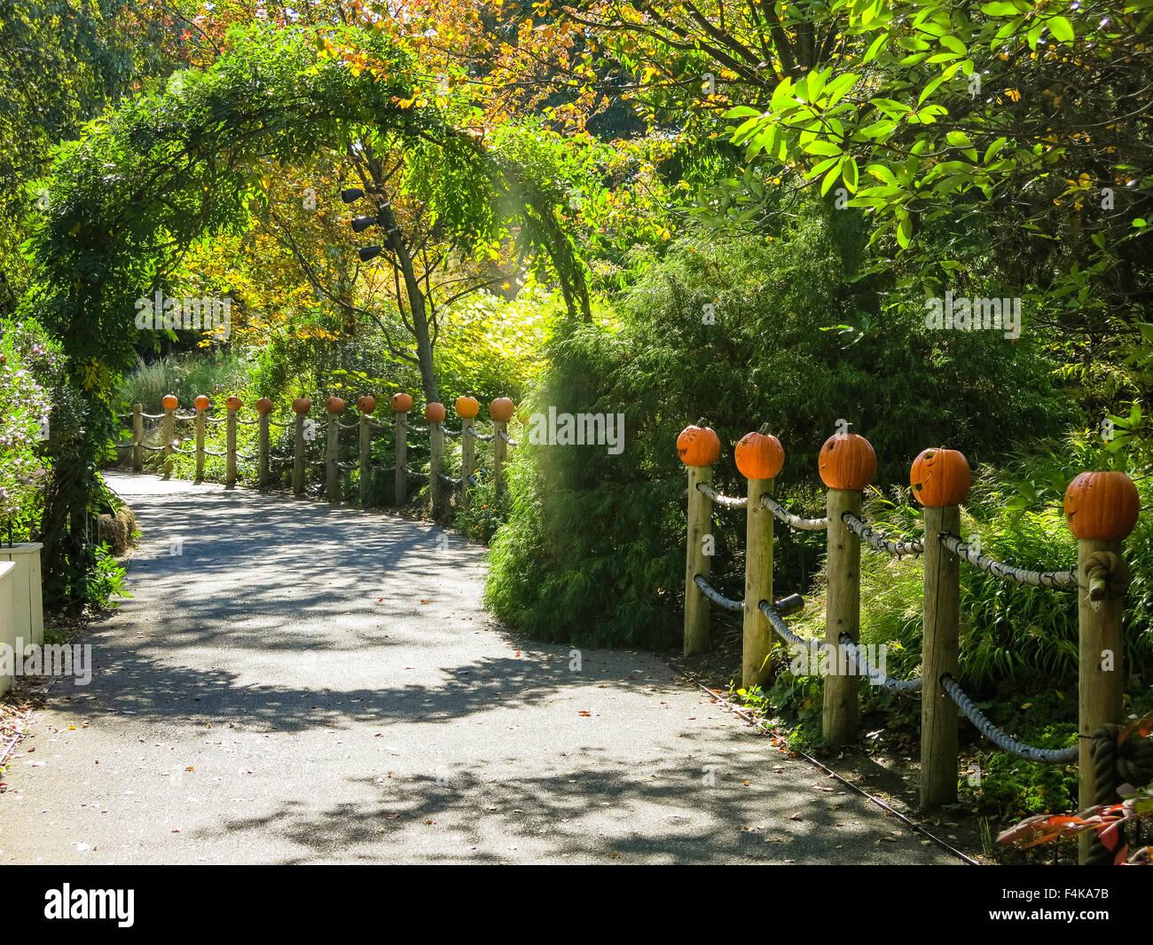 Everett Childrenu0027s Adventure Garden, New York Botanical Garden, The Bronx,  NY, USA