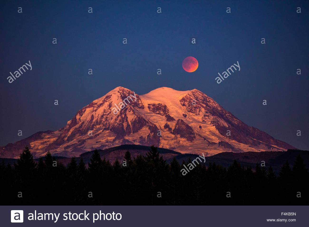 The full moon in a type of lunar eclipse known as a Super Blood Moon rises over Mount Rainier in Washington state. - Stock Image