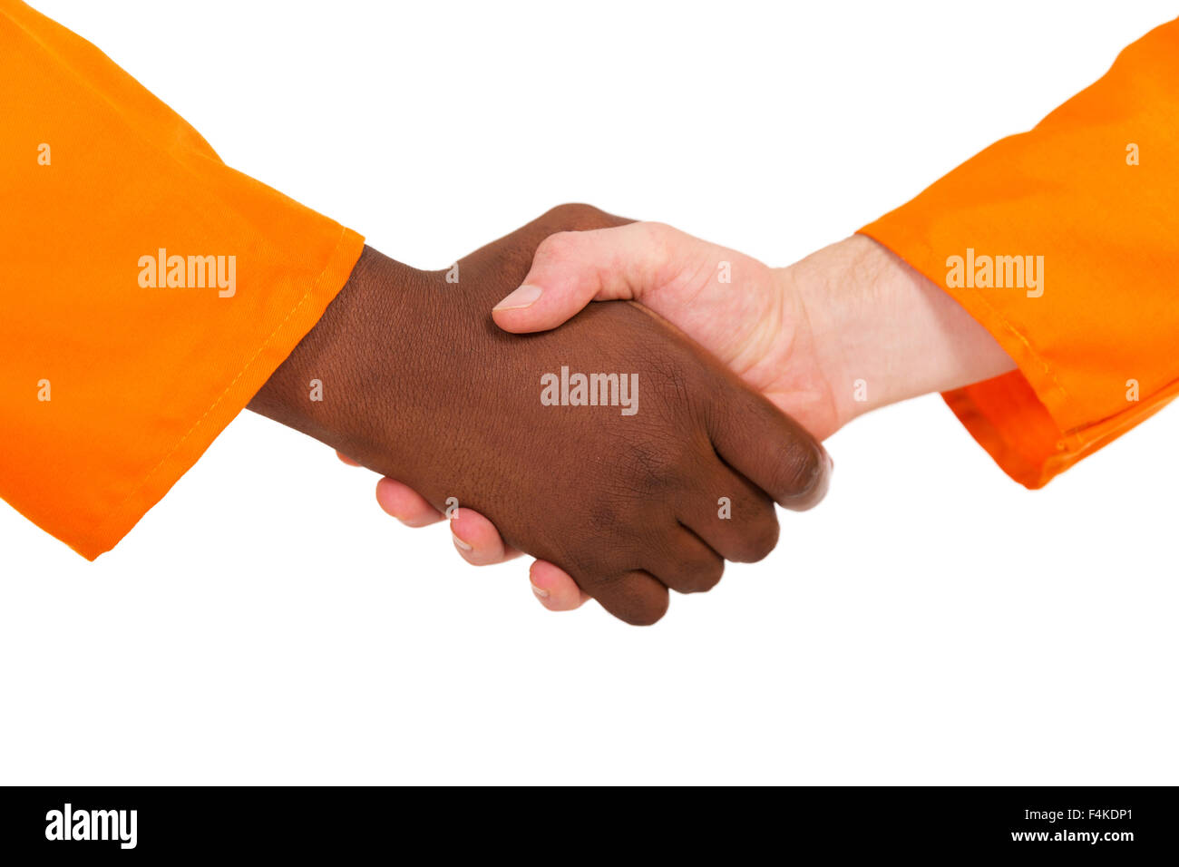 close up of construction workers handshake on white background - Stock Image