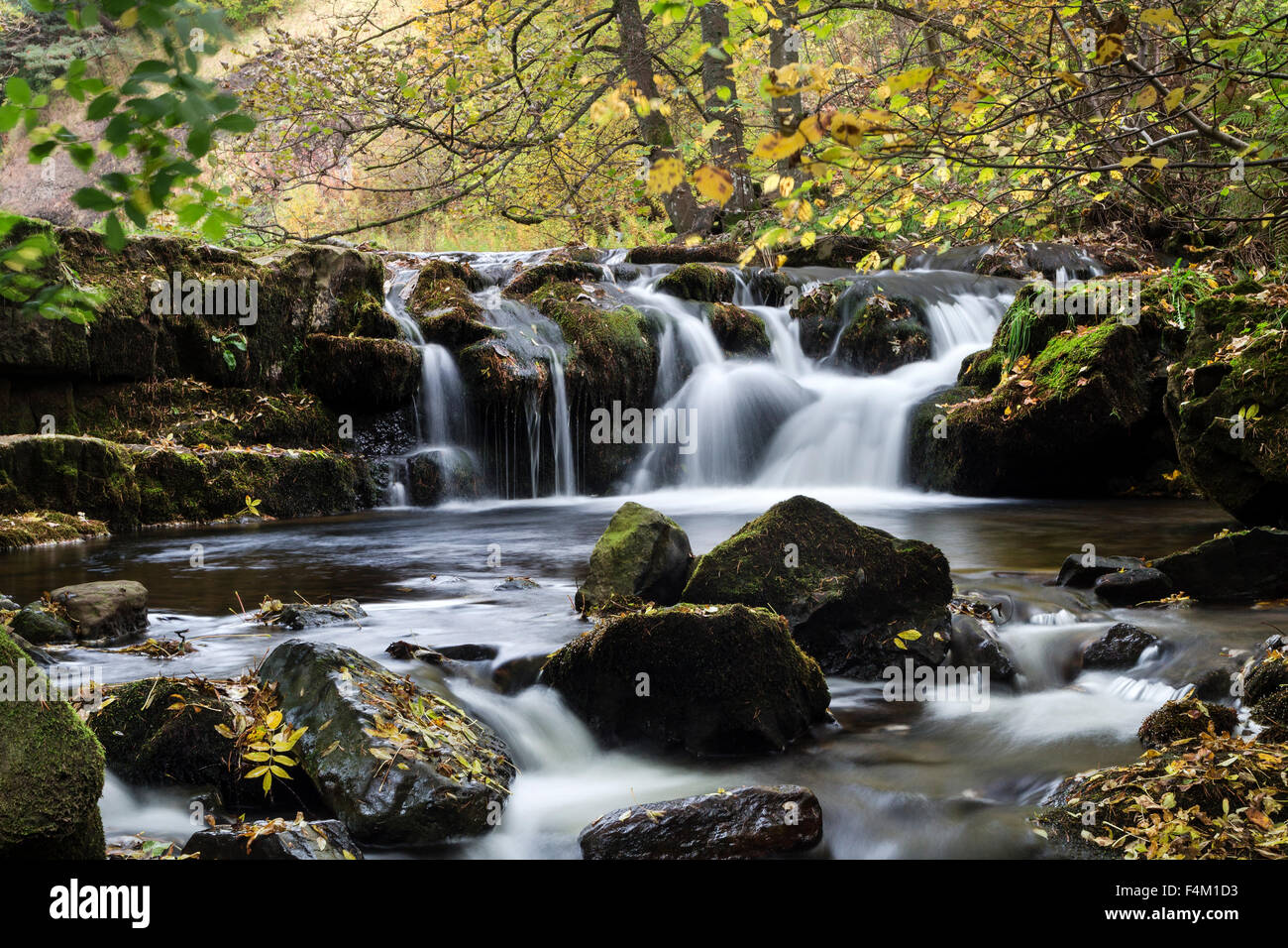 Autumn Colours Hudeshope Beck Middleton In Teesdale County Durham UK - Stock Image