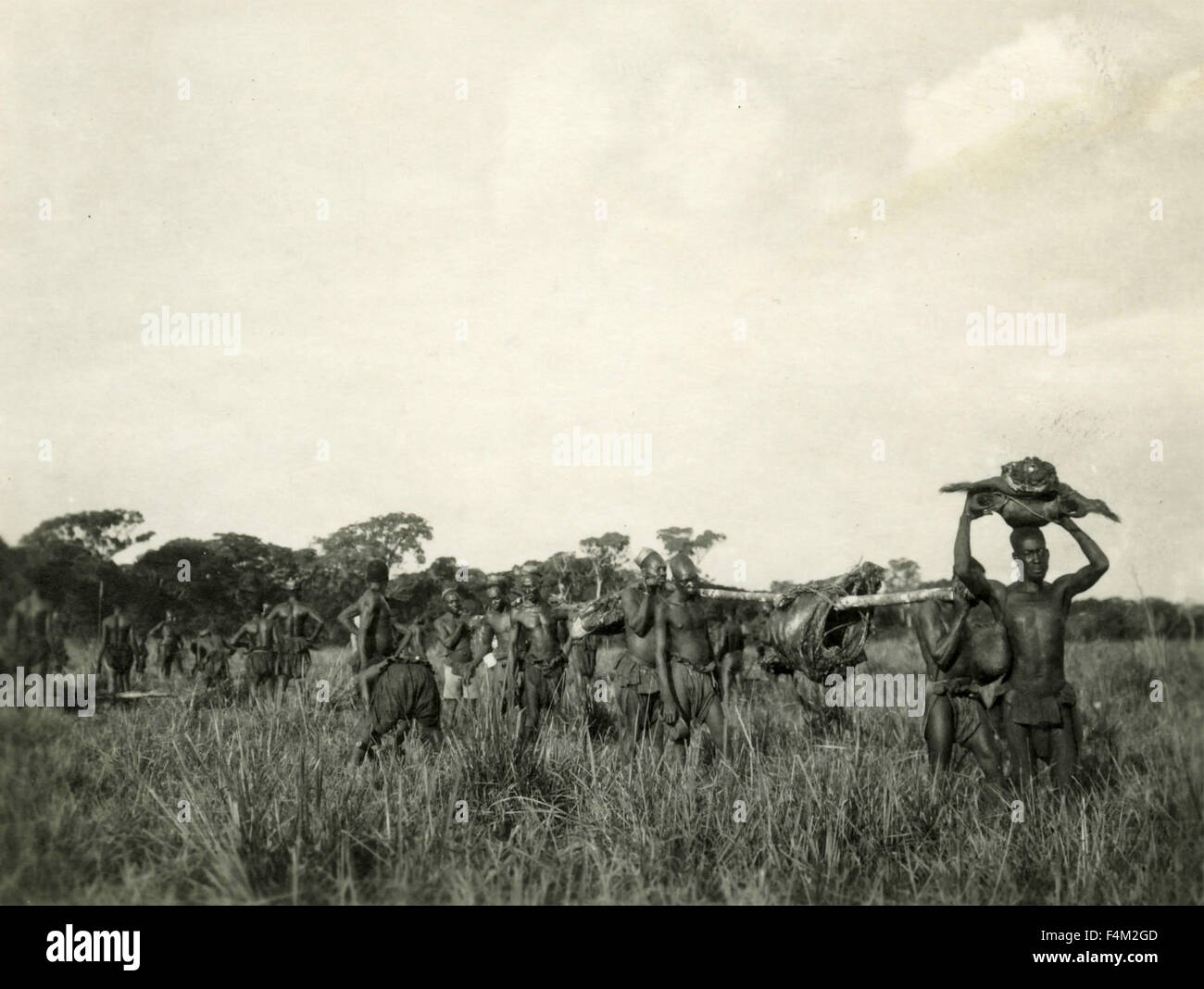 Manghetu Africans carry the meat of animals killed by Pygmies - Stock Image