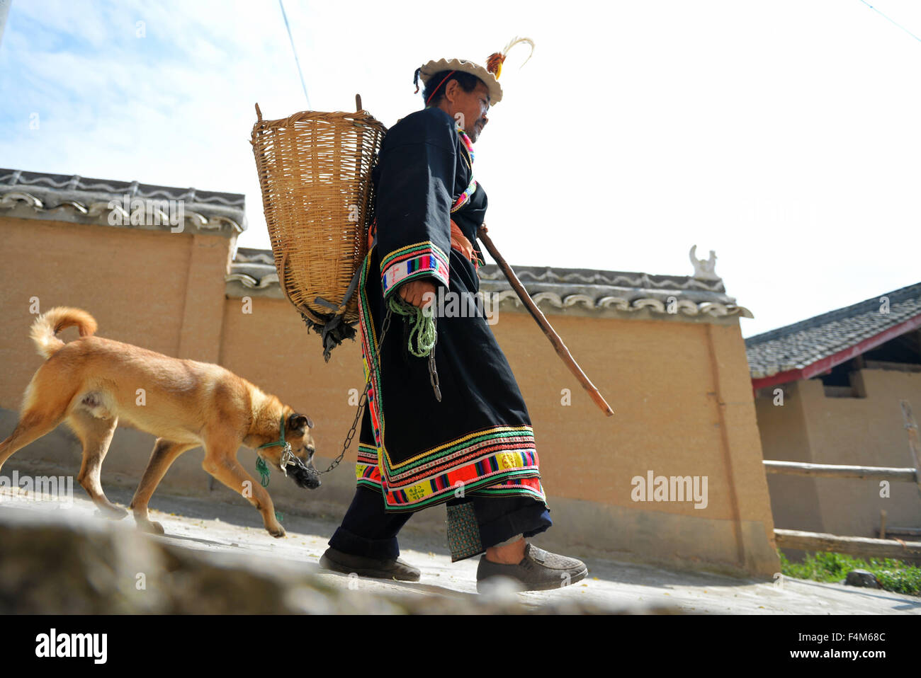Beijing, China's Gansu Province. 12th Oct, 2015. 70-year-old Chen Fuyou leading his dog named Gaizhu walks in - Stock Image