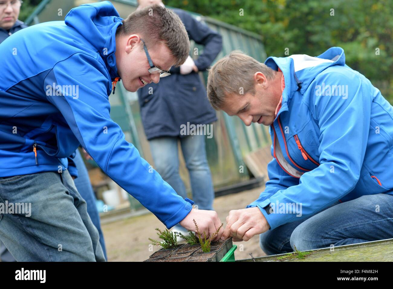 Handicapped  man Christoph Schmidt (left) works together with a non handicapped man in a garden, Germany, city of Stock Photo