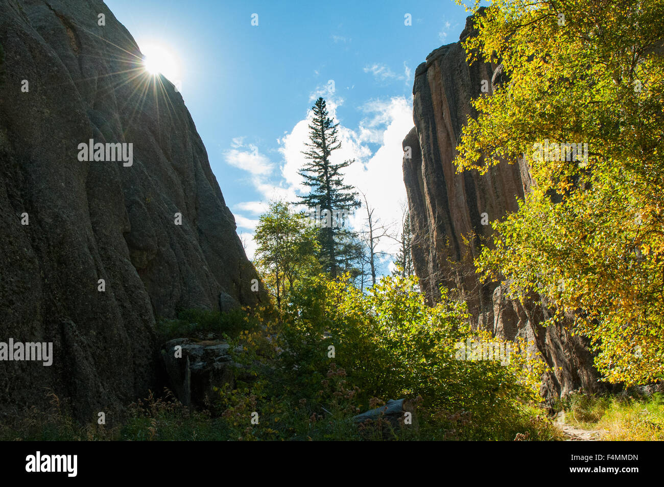 View at Sylvan Lake, Custer State Park, South Dakota, USA - Stock Image
