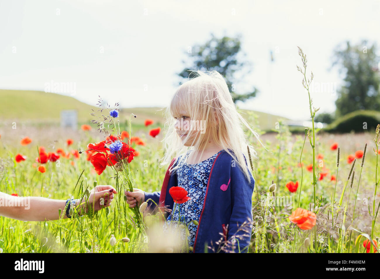 Woman's hand giving wildflowers to cute girl standing at grassy field - Stock Image