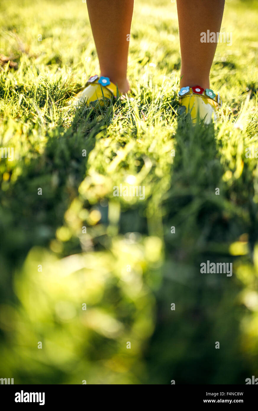 Feet of a little girl on the grass - Stock Image
