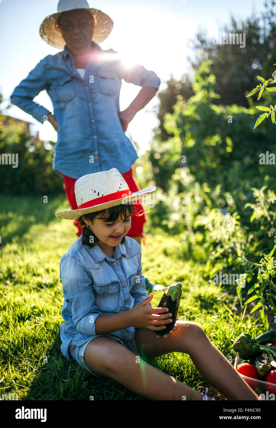 Senior woman and her granddaughter harvesting vegetables in the garden - Stock Image