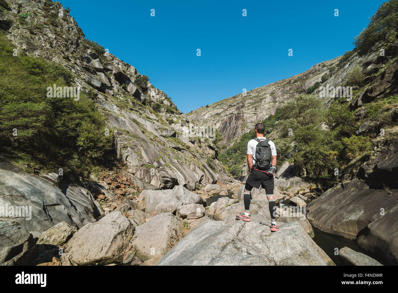 Spain, Galicia, A Capela, Ultra trail runner at the canyon of Eume river - Stock Image
