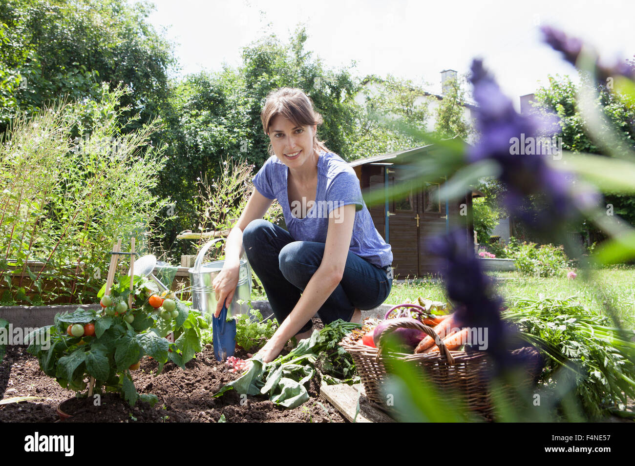 Smiling woman gardening in vegetable patch Stock Photo