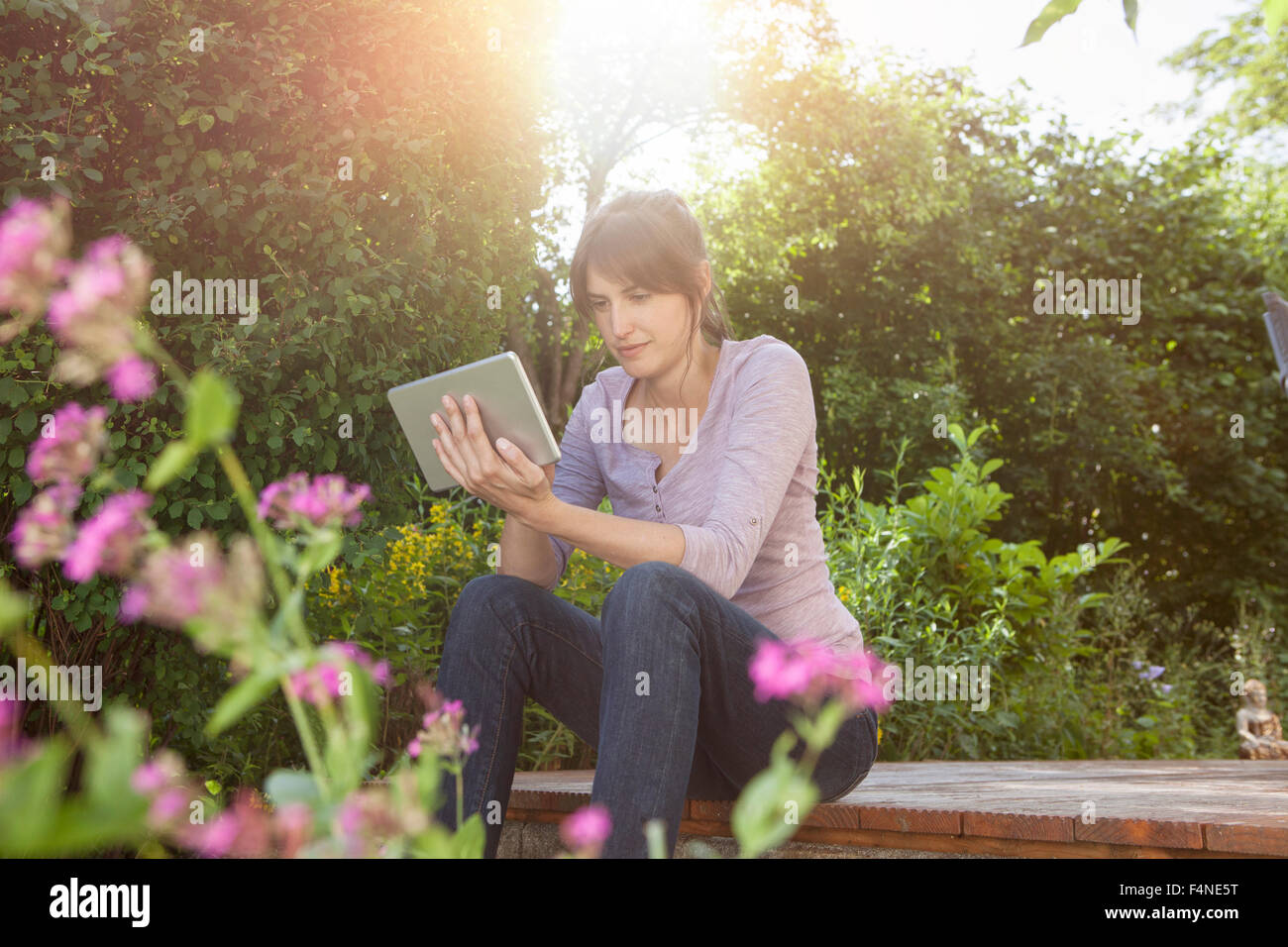 Woman sitting in garden using digital tablet - Stock Image