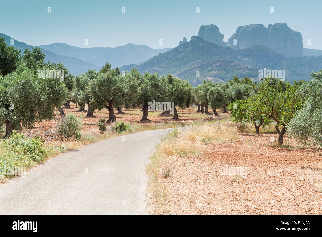 Les Roques de Benet peaks, Els Ports de Tortosa-Beseit Natural Park, near La Horta de Sant Joan, Spain - Stock Image