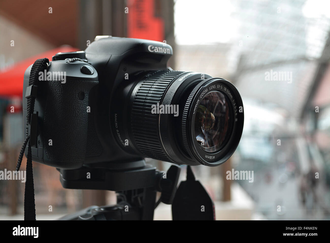 Canon Camera Stock Photos & Canon Camera Stock Images - Alamy