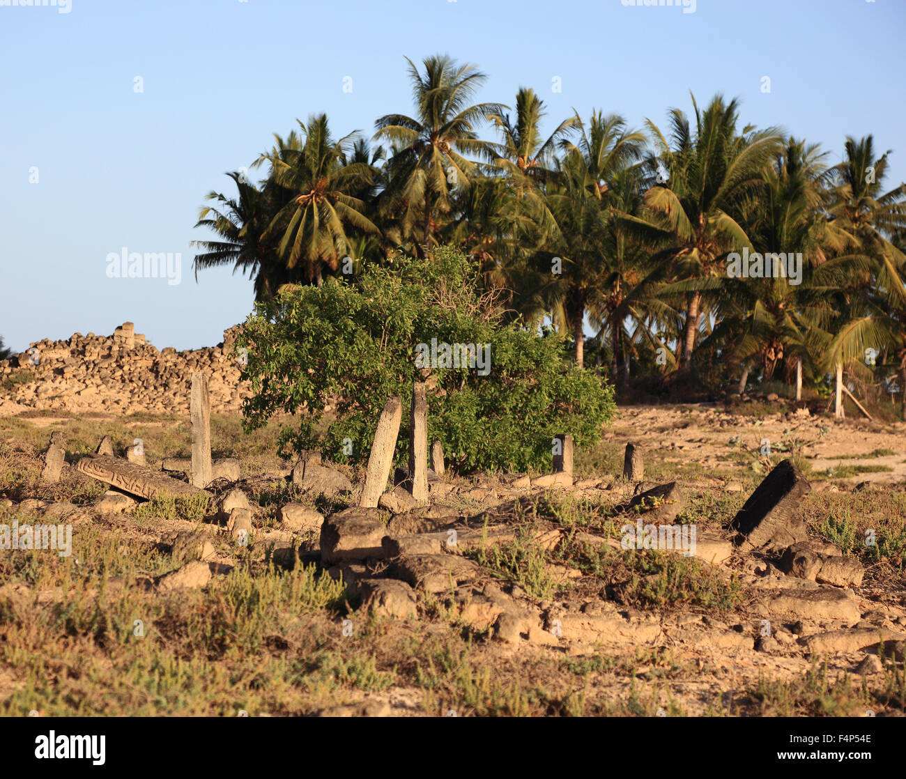 More historically Arabian cemetery in the Al-Baleed excavation field, Unesco world cultural heritage - Stock Image