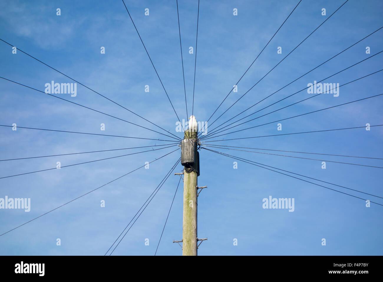 Uk Telephone Pole Wiring - Circuit Wiring And Diagram Hub •