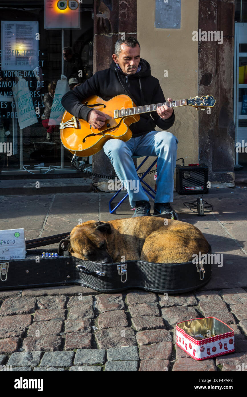 Dog sleeping in guitar case of busker playing music on the street - Stock Image