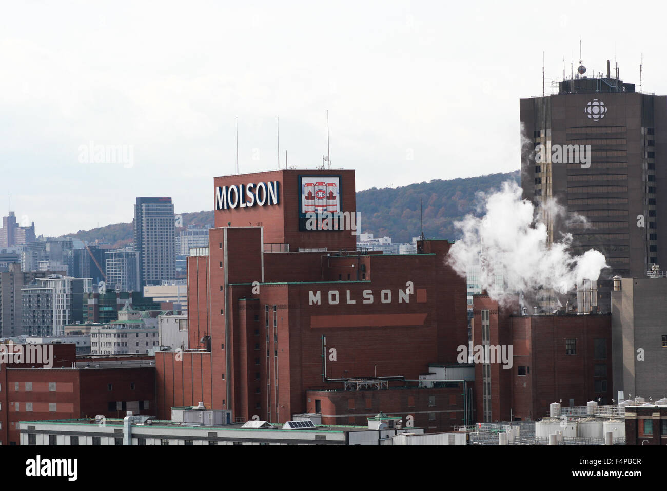company analysis report molson coors brewing co Exploring molson coors brewing co  co class b stock price, news, & analysis  that have sold molson coors brewing co class b company stock in the.
