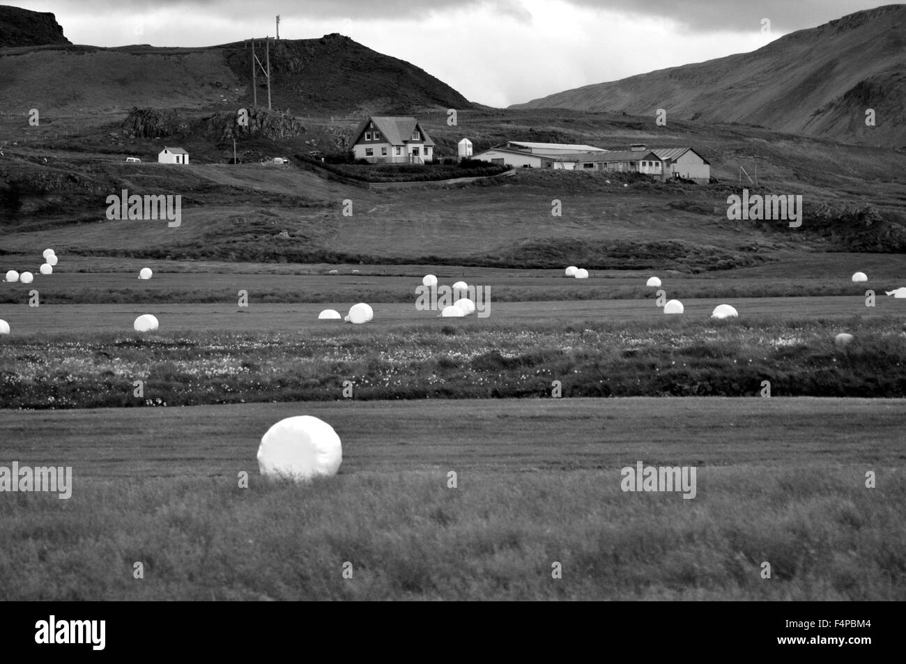 Iceland, Icelandic Holiday, Land of Fire and Ice, The Great Outdoors, making Hay, hay bails - Stock Image