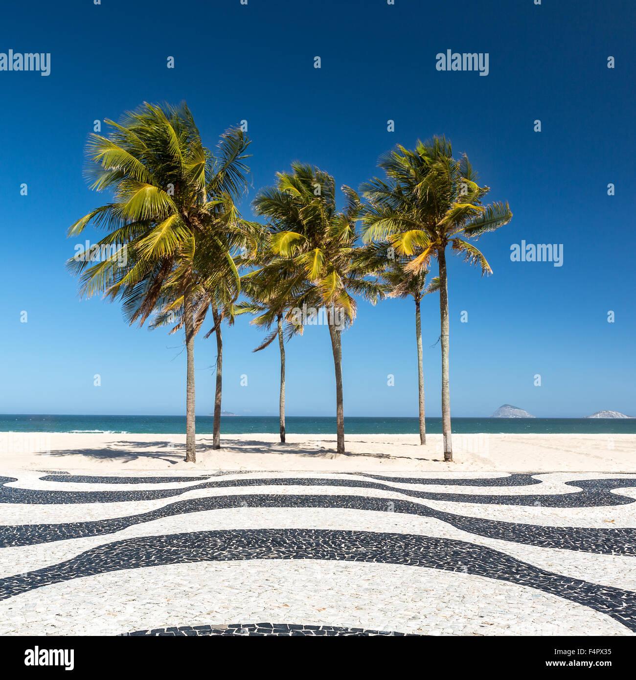 Palm trees and the iconic Copacabana beach mosaic sidewalk, in Rio de Janeiro, Brazil. Stock Photo